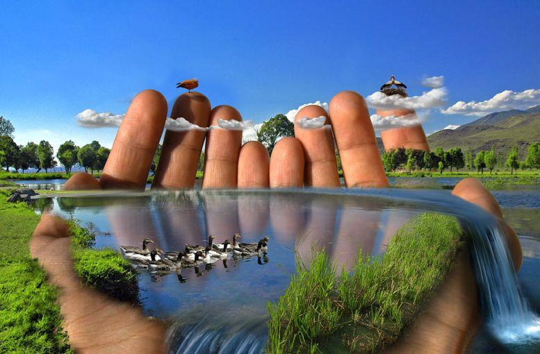 «Земля, где правит природа».